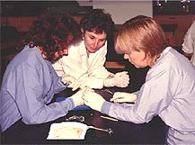 Photo of paramedic students in lab