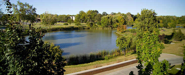 Photo of pond outside Brighton campus