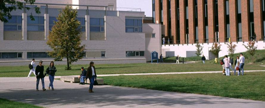 Photo of students walking around the MCC Brighton campus